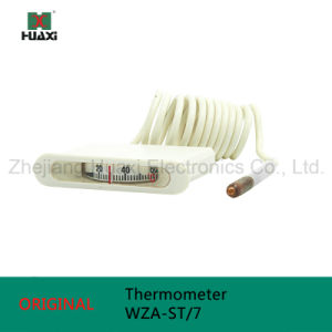Termometro 20-120c del tubo capillare Wza-St/7