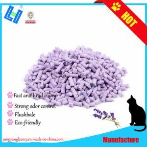 Rápido, un disco macizo, el olor de lavanda de Control de gatos de tofu