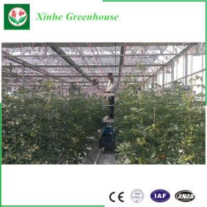 Gutter Conectado Film emissões para Plantio/Semeadura