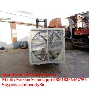 Fabricante profissional do rolamento do ventilador de exaustão baixo preço de venda