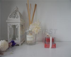Candele di vetro di Chirstmas della tazza della candela di nuovo disegno