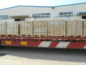 0010911501 LKW-Brennölpumpe für MERCEDES-BENZlkw (Selbstersatzteile)