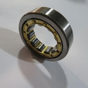SKF rodamiento de rodillos cilíndricos de equipos (NF1015)