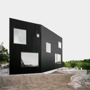 Façade en aluminium Panneaux décoratifs Revêtement mural de l'écran