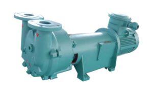 Bague de l'eau de la série 2BV Pompe à vide pour routeur CNC