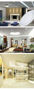 Nieuwe Energie - de LEIDENE van de besparing Moderne Lamp van het Plafond voor het Restaurant van het Hotel