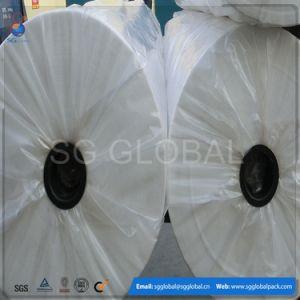 prodotto non intessuto bianco di 25g pp per la copertura di agricoltura