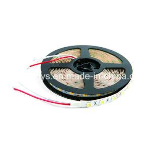2 en 1 de Color Dual Chip ajustable CCT TIRA DE LEDS SMD5050