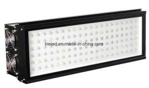La più nuova pianta di stile LED coltiva 300W chiaro