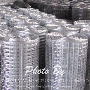 製造業者の高い等級の溶接された金網