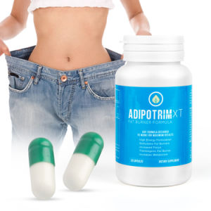 Certificación de GMP Acetil L-Carnitina cápsula dura Slim Vie la pérdida de peso adelgaza la cápsula