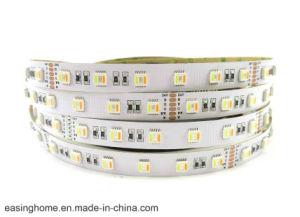 14.6W/M indicatore luminoso al neon della corda della flessione di Rgbww LED della lampada della striscia dei 5050 LED personalizzano l'indicatore luminoso di striscia rigido di lunghezza LED 60 LED/tester nessun indicatori luminosi lineari della decorazione di nerezza