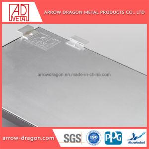 Revestimento a pó Ignifugação Anti-Seismic alumínio alveolado Painel para placa de exposições