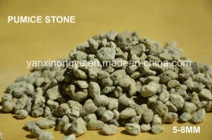Органических удобрений садоводство сельскохозяйственных удобрений из камня Pumice