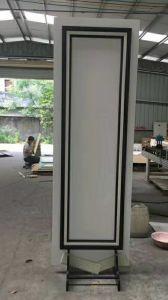 Le WPC individuels de matériaux de construction revêtement mural (AA01)
