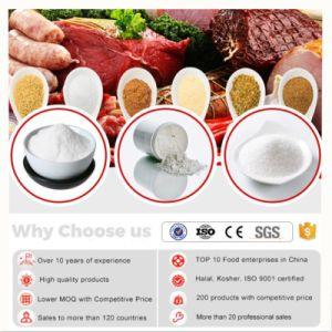 China levert CAS 65-85-0 van de Rang van het Voedsel van de Zuiverheid van 99% Min Bewaarmiddel van het Poeder van Benzoic Zuur