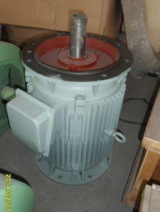 8KW 100tr/min basse vitesse verticale de générateur à aimant permanent