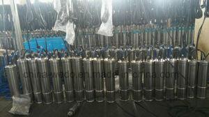 4SD2/10 Submersible Pompe à eau de puits profond pour l'irrigation (0,75 KW/1 HP)