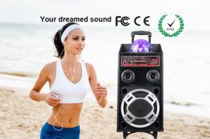 جديدة حارّ رخيصة [بورتبل] ميكروفون تسجيل مجهار المتحدث