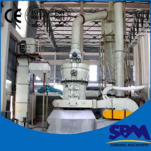 Linea di produzione della polvere del gesso dell'esportatore di prezzi bassi