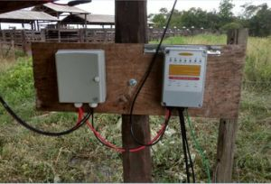 Zhejiang jubelt 24V 36V Oberflächenwasser-Pumpe mit Sonnenkollektoren 200W und 300W zu