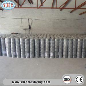 マレーシアのための5feetによって電流を通されるヒンジ接合箇所の圃場の塀