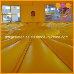 Juegos juguetes inflables Tigre Moonwalk Puente bouncer para la promoción (AQ350)