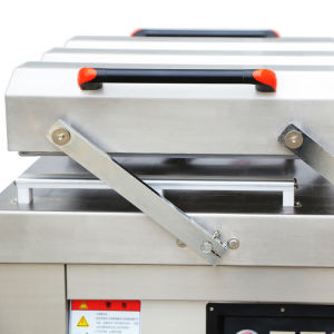 DZ-800/2SA Professional Câmaras Duplo Fábrica de embalagem máquina de embalagem a vácuo para manter os alimentos frescos