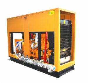 Générateur de gaz silencieux 600kw pour centrale électrique CHP