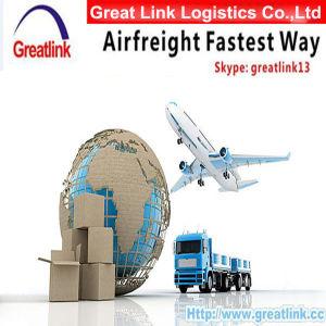 O transporte aéreo de carga aérea&& serviço aéreo de carga da China AOS ESTADOS UNIDOS DA AMÉRICA