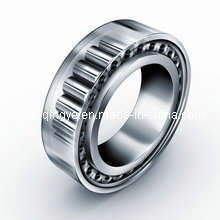 Roulements à rouleaux cylindriques (UNA6038/C3)
