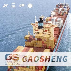 Empresa de logística internacional de la Navegación Marítima Servicio Express/China Filipinas/India