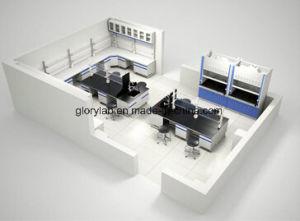 実験室の家具等のフルセットが付いている完全な実験室