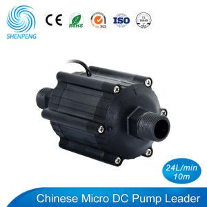 12V/24V DC Mini Calentador Solar de agua bomba de cebado