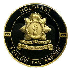 Soem keine MOQ Zin Legierungs-kundenspezifische kupferne blaue Decklack-Metallandenken-Münze (176)