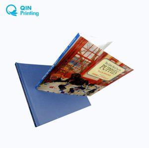 Ecoの友好的な4つのカラーオフセット印刷の児童図書