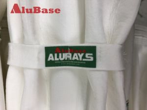 Alurays 여분 지상 여과 백 & 감금소 의 필터