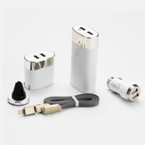 Il regalo portatile della Cinque-Parte del caricatore del USB di nuova di affari corsa dei regali ha impostato con il marchio su ordinazione