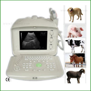 FM-9003p de Medische Scanner B/W Ultrasond van de Apparatuur van de Diagnose Draagbare voor Dierenarts/Veterinair/Dierlijk Gebruik