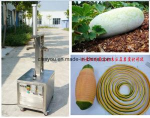 Cire végétale multifonctionnelle industriel de la Papaye Melon Machine Peeling de citrouille