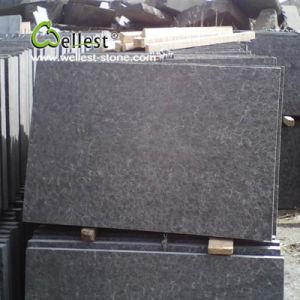 Alle Produkte Zur Verfügung Gestellt VonShenzhen Wellest Industry Inc - Schwarzer granit fliesen preis