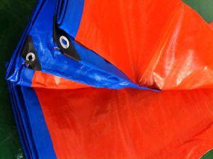 Hoja de lona de plástico barato con pasamuros