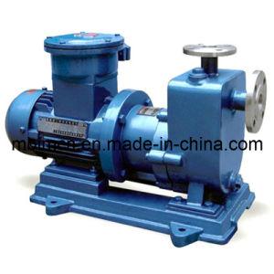 標準磁気運転のステンレス鋼ポンプ