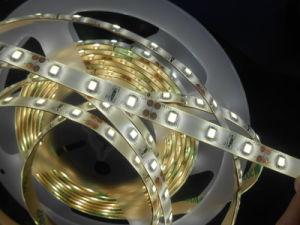 IP65 esterno Multi Color 2835 LED Strip Light 36W 5m LED Flex Strip 6000lm per Decoration