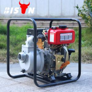Bison Agricultura 5CV del motor Diesel de conjunto de la bomba de agua