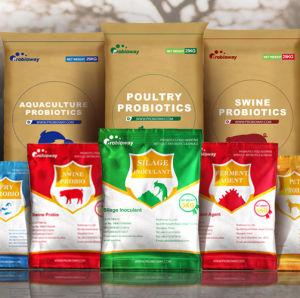 Viver boas bactérias inoculante silagem confiável probióticos ingredientes de alimentos