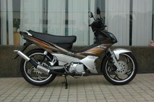 50cc/110cc Cub Motociclo (TM110-2C NOVO)