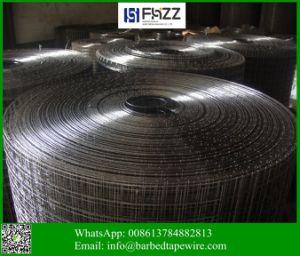 熱浸された電流を通された溶接金属のステンレス鋼の金網