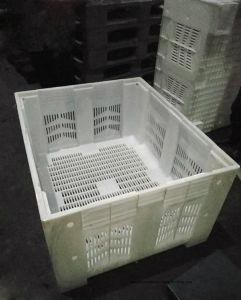 Recipiente de Injecção de plástico com qualidade Googd do Molde