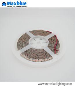 Indicatore luminoso di striscia flessibile della striscia 3528 LED di DC12V/DC24V SMD LED